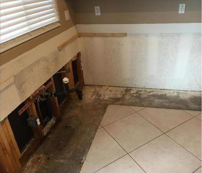 Kitchen Leak and Mold Damage in Burnsville After