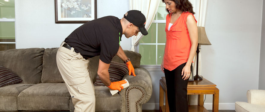 Burnsville, MN carpet upholstery cleaning